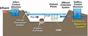 Wetland Waste Treatment