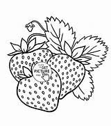 Coloring Fruit Strawberry Strawberries Fruits Printable Printables Apple Drawings Draw Kinder Malvorlagen Obst Ausmalbilder Colouring Frutas Embroidery Tela Toddlers Vegetables sketch template