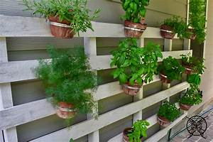 Vertical, Pallet, Herb, Garden