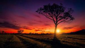 Sunset, Scenery, Wallpapers