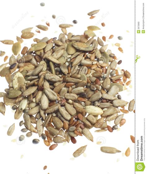 mixed seeds stock photo image of white natural snack