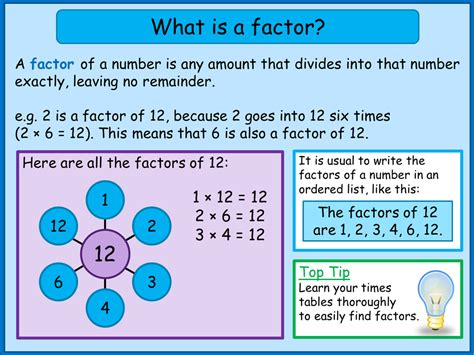 Finding Factors And Multiples  A Plus Topper