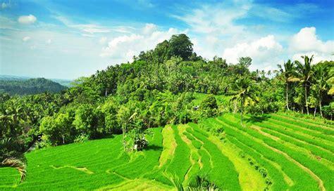 nusabalicom pemandangan indah  bukit jambul