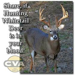 Whitetail Deer Hunting Quotes