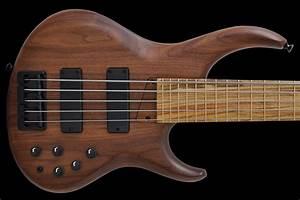 Mtd 535   Archive     High End Bass Guitars  Amps  U0026 Bass Strings