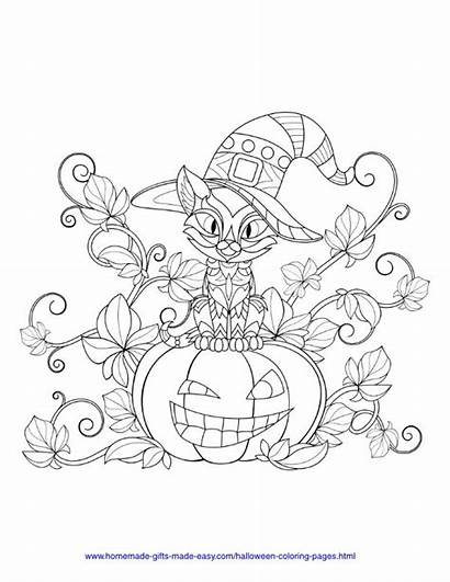 Coloring Pumpkin Halloween Bat Pdf Easy Homemade