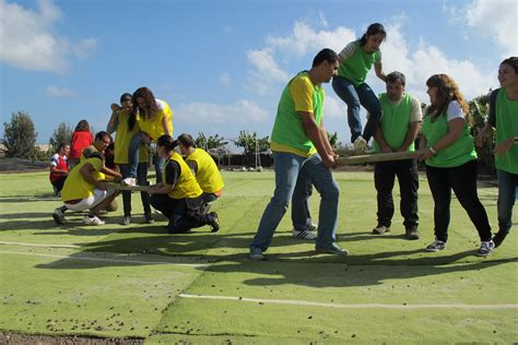 Office Team Building by There S No Quot I Quot In Team Let Your Company Identity Grow