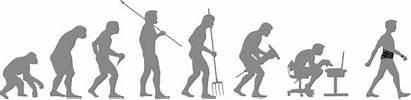 Bewegung Bewegt Evolution Djo