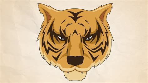 easy ways  draw  tiger  pictures wikihow