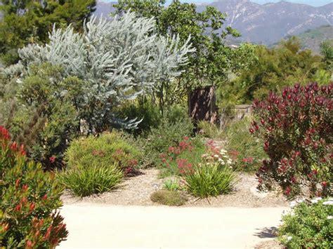 Australian Native Garden Design Ideas Australian Outdoor