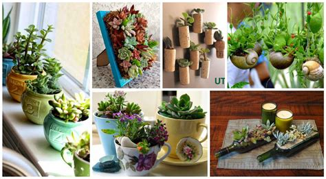 10+ Ideas Creativas Con Plantas Para Decorar Tu Hogar. Kitchen Breakfast Bar Island. Bathroom Ideas At Ikea. Food Ideas Post Tonsillectomy. Back Porch Wedding Ideas. Table Decorating Ideas For Spring. Valentines Ideas Pinterest. Living Room Decorating Ideas Zebra Print. Ideas Para Decorar Un Cuarto