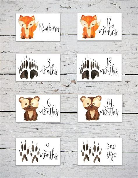 Printable Nursery Drawer Size Labels Woodland Animals Drawer