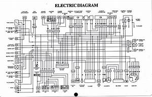 Raptor 350 Wiring Diagram
