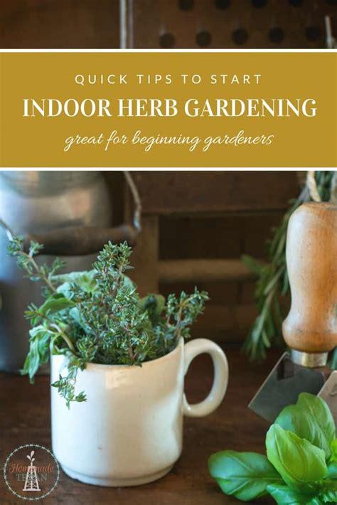Quick Tips To Start Your Indoor Herb Garden Today