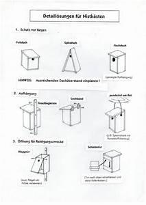 Nistkasten Für Spatzen : detlef s homepage meine welt ~ Michelbontemps.com Haus und Dekorationen