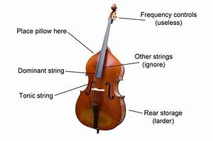 Double Bass - Musical instrument instruction diagrams: get ...