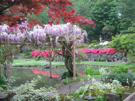seattle japanese garden celebrates opening day