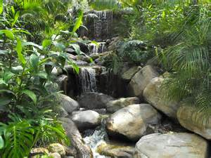 Waterfall Tropical Garden