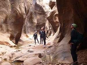 Canyoneering Full Day Trip - Cedar Mesa | Moab Cliffs and ...