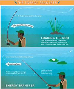 Beginners Guide To Fly Fishing  Tips  Gear  And More