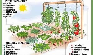 Carre De Jardin Potager : petit espace jardin ~ Premium-room.com Idées de Décoration