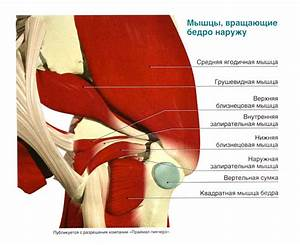 Артроз тазобедренного сустава лечение в екатеринбурге