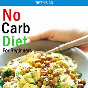no carb diet for beginners the ultimate diet guide