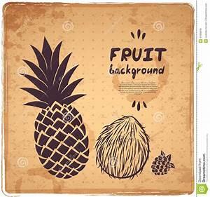 Retro Pineapple Illustration Stock Photo - Image: 41099978