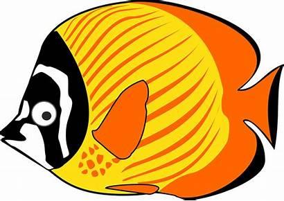 Ikan Gambar Kartun Lucu Hiu Paus Hias