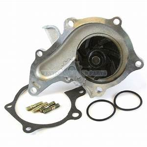 New Engine Water Pump For 93 Geo Prizm