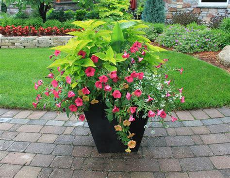 container gardening reder landscaping landscape design lawn care