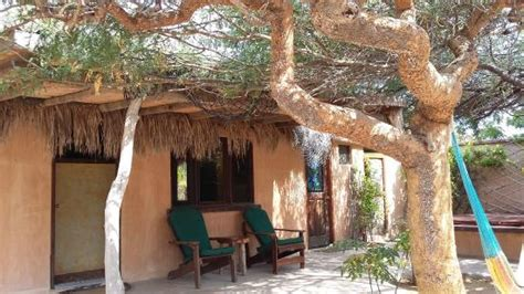 Picture Of Baja Bungalows, Cabo