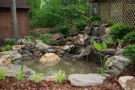 Natural Small Backyard Ponds And