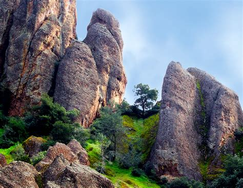 bay nature magazine pinnacles national monument year oasis