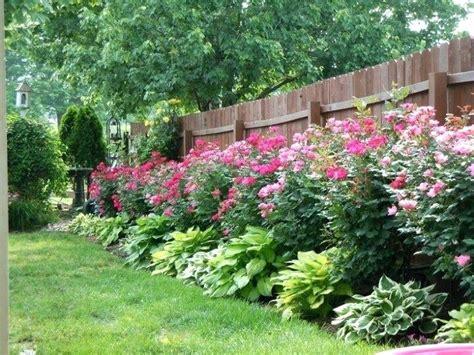 bush garden ideas rose bush landscape ideas rose bush landscaping designs rose rose rose bush garden ideas rose