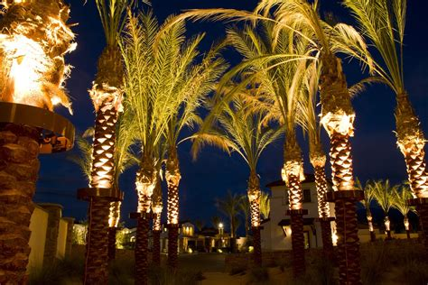 palm tree lights stella led palm tree light bradley lighting