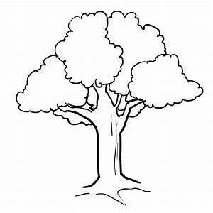 Tree 54 Nature Printable Coloring Pages