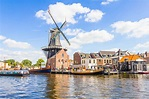 Why Haarlem, Netherlands Is the Perfect Day Trip from ...