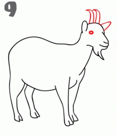 draw  goat step  step