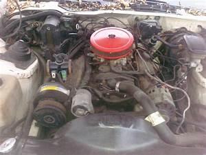 No Heat 1989 Rs 305 V8 Tbi Camaro - Page 2 - Camaro Forums