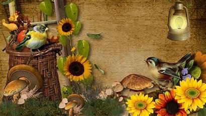 Harvest Fall Wallpapers Beginning Desktop Backgrounds Flowers