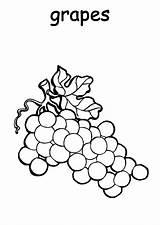 Grapes Coloring Plantation Printable Smiley Sheets Template Colorluna sketch template