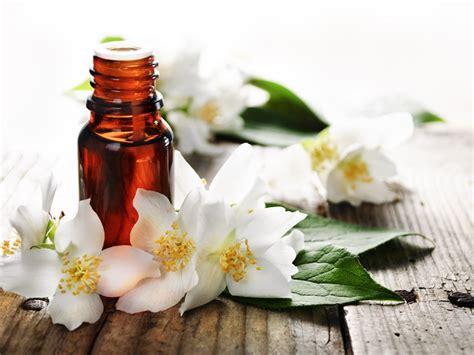 fiori di bach e ansia i fiori di bach combattono ansia e stress dottore ma 232