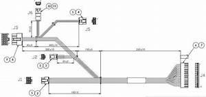 Reemplazo El U00e9ctrico De Encargo Del Arn U00e9s De Cable De La Asamblea De Cable De 20 Pin Molex