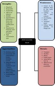 swot analysis of myself and my idea charles alfred delasaux