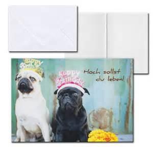 sprüche für hunde cartolini aufklappkarte karte sprüche zitate briefumschlag geburtstag hunde 17 5 ebay