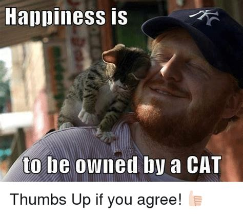 Owned Meme - happiness is to be owned by a cat thumbs up if you agree