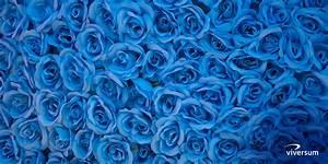 Wirkung Der Farbe Grün : bedeutung und wirkung der farbe blau viversum ~ Markanthonyermac.com Haus und Dekorationen