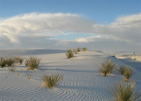 Image result for white sands that are not copyrighted