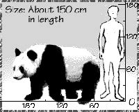 Physical Description | WWF
